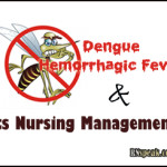 Dengue Hemorrhagic Fever and its Nursing Management