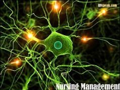 Multiple-Sclerosis-Nursing-Management