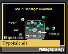 physiology-hypokalemia