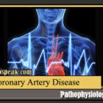 Coronary Artery Disease Pathophysiology