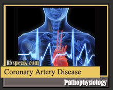 coronary-artery-disease-pathophysiology