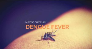 dengue fever nursing care plan