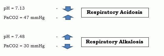 abg repiratory acidosis -alkalosis