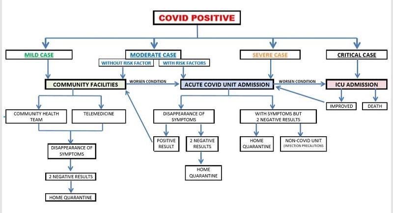 covid 19 diagram 2020